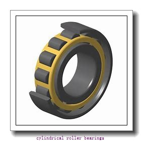 FAG NU2318-E-M1-C3  Cylindrical Roller Bearings