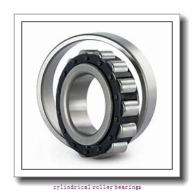 FAG NU1034-M1A-C3  Cylindrical Roller Bearings