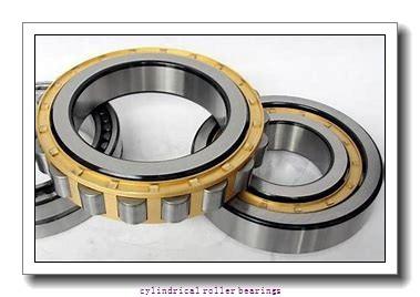 65 mm x 140 mm x 48 mm  FAG NU2313-E-TVP2  Cylindrical Roller Bearings