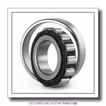 FAG NU1036-M1A  Cylindrical Roller Bearings