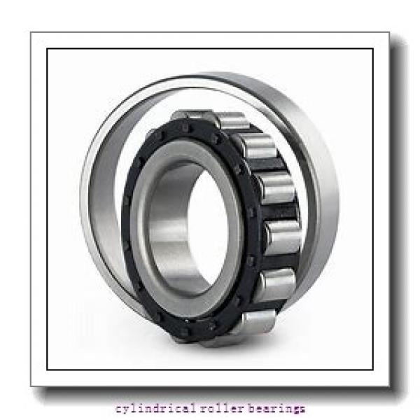 FAG NU2313-E-M1-C3  Cylindrical Roller Bearings #2 image