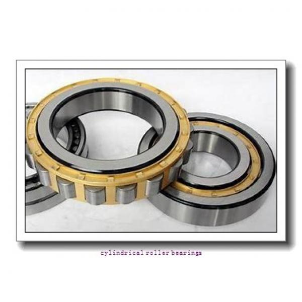 FAG NU1020-M1A-C3  Cylindrical Roller Bearings #1 image