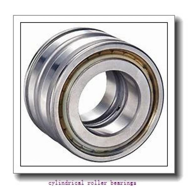 105 mm x 160 mm x 26 mm  FAG NU1021-M1  Cylindrical Roller Bearings #1 image